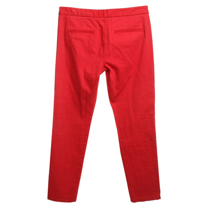 Theory Broek in Red