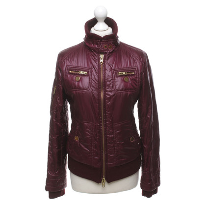 Fay Jacket in Bordeaux
