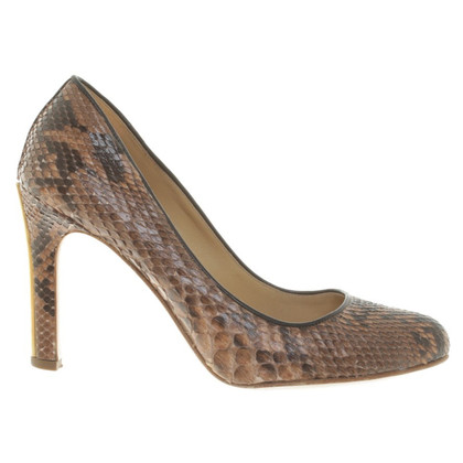 Miu Miu pumps from snake leather