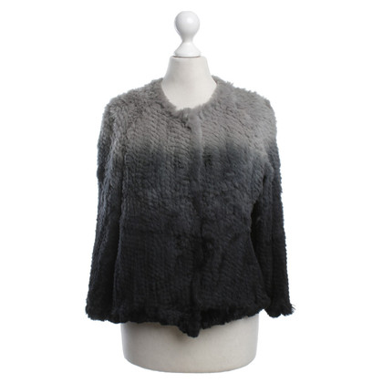 Armani Bolero in gray tones