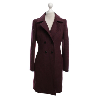 Hobbs Cappotto in Bordeaux