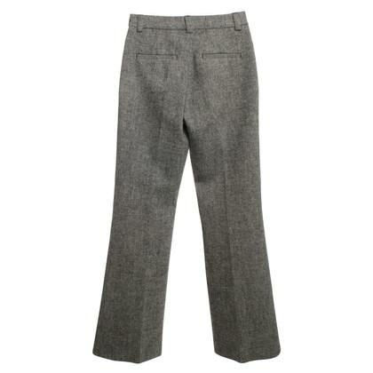 Strenesse Elegante Hose in Grau