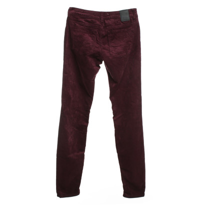 Drykorn Velvet pants in Bordeaux