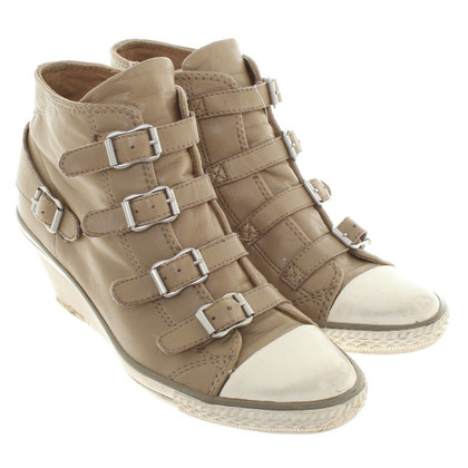 Ash Sneaker-Wedges in Khaki