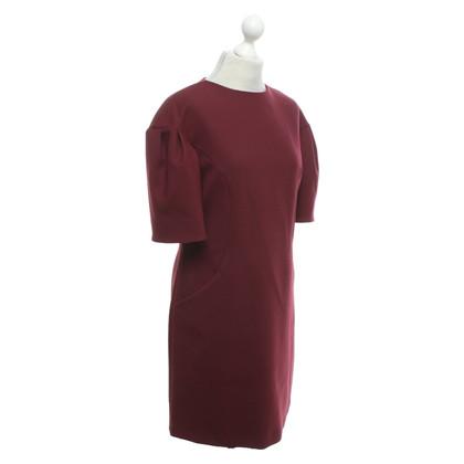 Erika Cavallini Dress in Bordeaux purple
