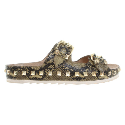 Ash Sandals with reptile embossing