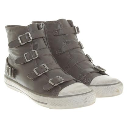 Altre marche Ash - Pelle Sneakers