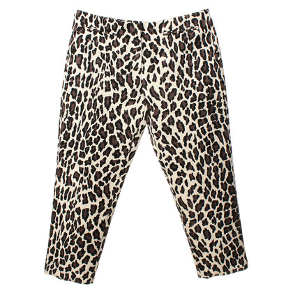 MSGM Pants with Leopard print