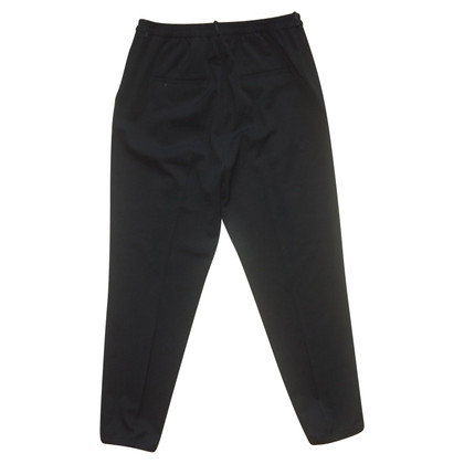 Schumacher Pleated pants