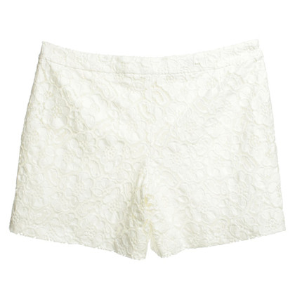 Escada Shorts con pizzo