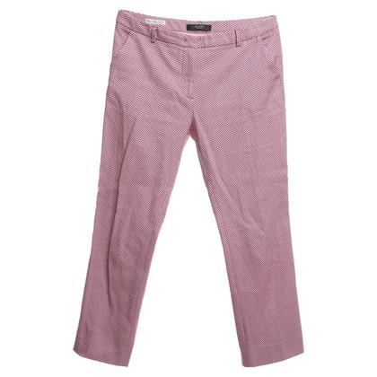 Max Mara pantaloni di cotone in rosso / bianco