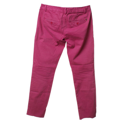 Dondup Hose in Pink