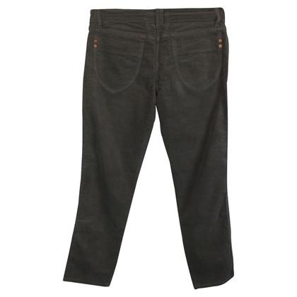 Closed Velvet Pants