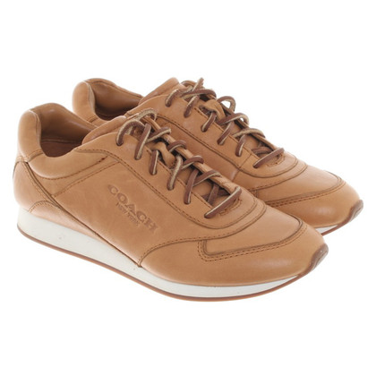 Coach Sneakers in Camel