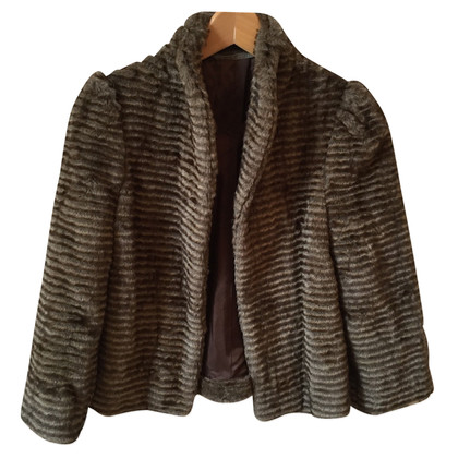 Cynthia Vincent  jacket