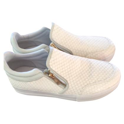 Ash scarpe da ginnastica