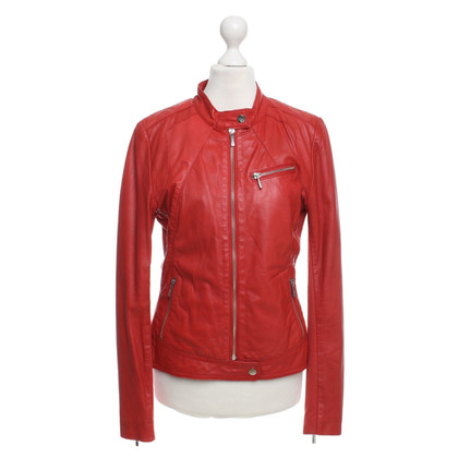 Other Designer Arma Collection - Leather Jacket