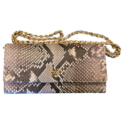 Prada  clutch Python leather Orchid