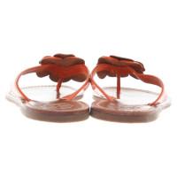tory burch sandalen mit blumen applikation second hand. Black Bedroom Furniture Sets. Home Design Ideas