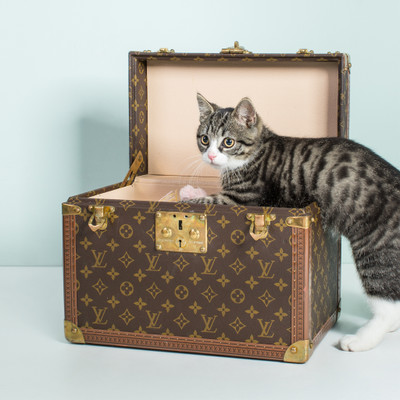 a125273b9c149 Louis Vuitton Second Hand  Louis Vuitton Online Shop